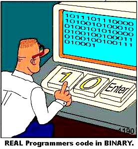 Programmer & The Coding
